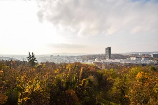 Как иностранцу купить жилплощадь в Словакии